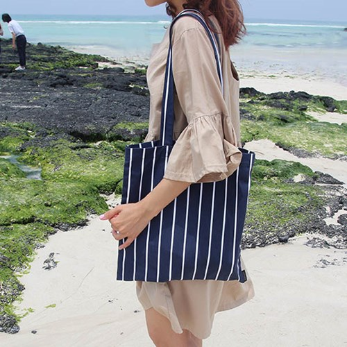 Stripe Navy EchoBag