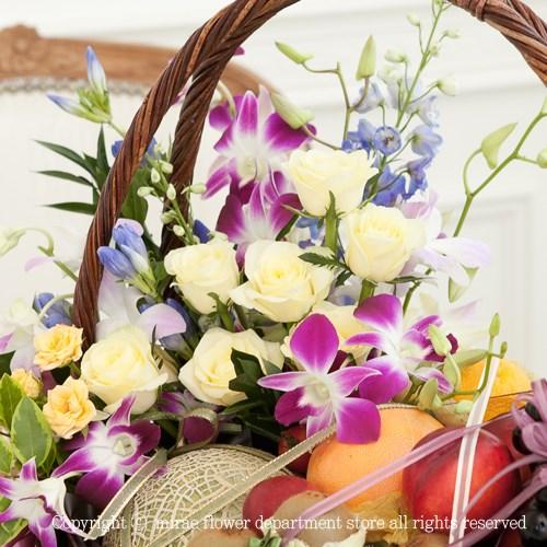 FN3407 지중해 꽃과일바구니