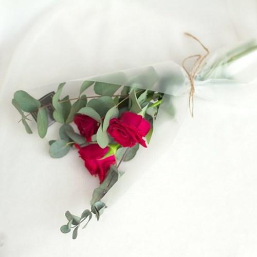 [한정 이벤트]열정적인 사랑,붉은장미