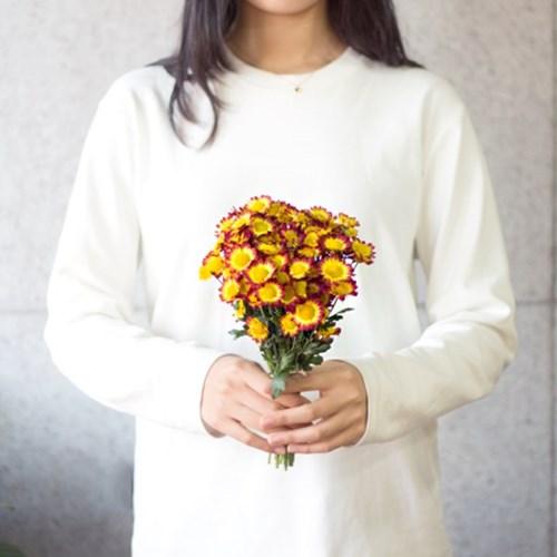 [한정 이벤트]투톤 소국 꽃다발