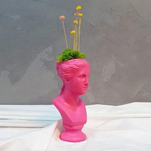 핑크 컬러 비너스 석고상화분 워터플라워+모스+리본