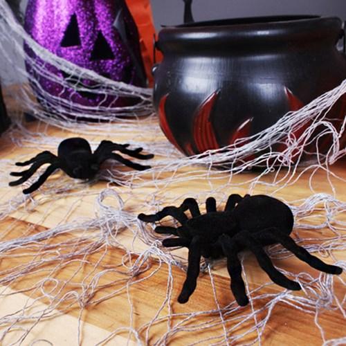 거미모형 15cm[2개입]