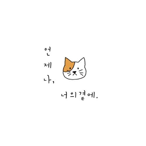 너의곁에-고양이 롤스크린 (R1269)_(2372777)