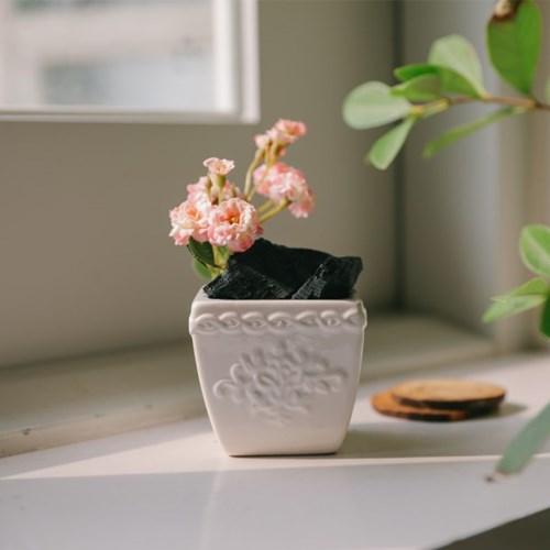 장미가지를 담은 숯화분-공기정화, 미세먼지제거, 습도_(100768739)