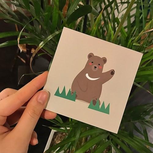 하이베어 미니 엽서 카드 6종
