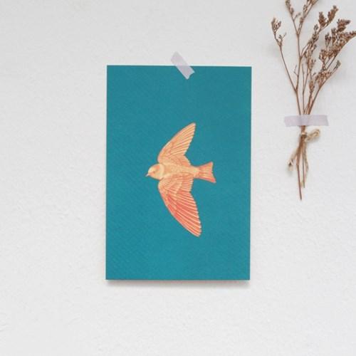 엽서 / 날개 (푸른)