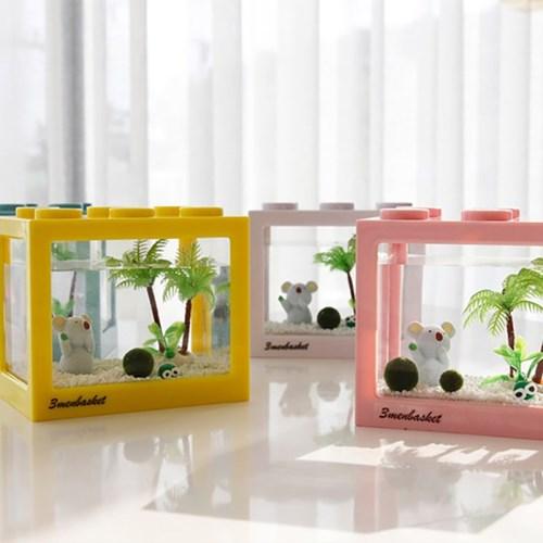 코알라와 함께하는 마리모 DIY세트(마리모:소)