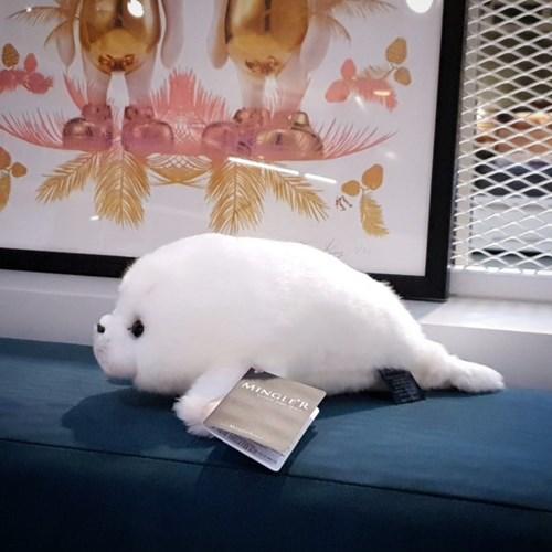 Mashmellow Baby Seal 11 inch - 마시멜로 베이비실 11인치