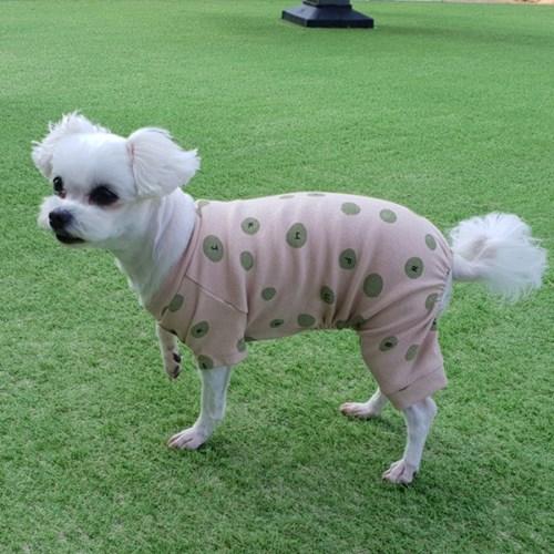 강아지옷 올인원 애견옷 신축성 짱 입고 벗기 편한 애견실내복