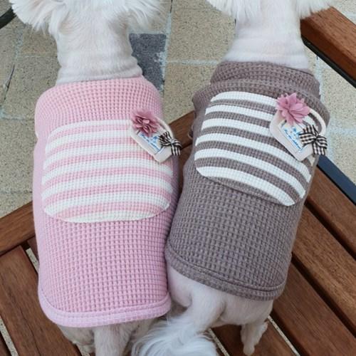 와플바구니티 강아지옷 신축성 좋음 댕댕이산책의상
