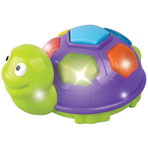 [레드박스] 노래하는 작은 거북이(612R23468-1)