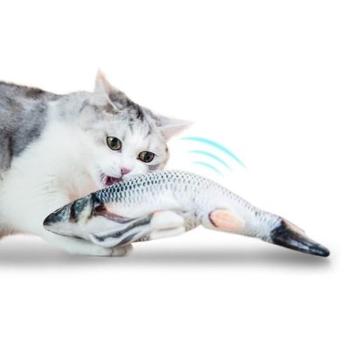 펫케어 춤추는생선 고양이용 붕어