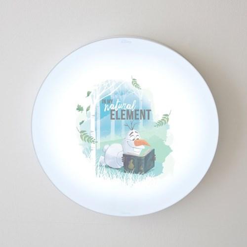 올라프_LED 방등 50W(C타입)