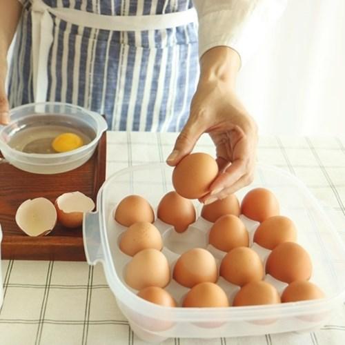 퓨어 계란 보관함 케이스 16구