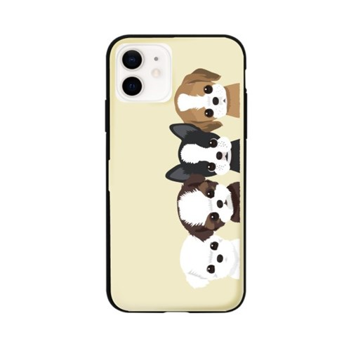 프루그나 아이폰 카드범퍼케이스20