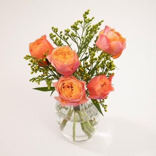 부부젤라 장미 꽃다발 (생화, 전국택배)