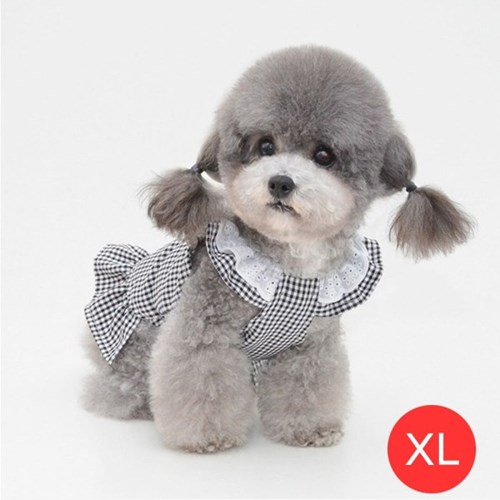 체크 레이스 강아지 원피스 블랙 XL