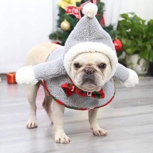 도그웨그 크리스마스 후드 망토 강아지 코스튬