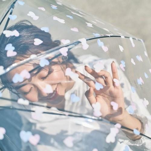 wpc우산 감성적인 투명 장우산 PT