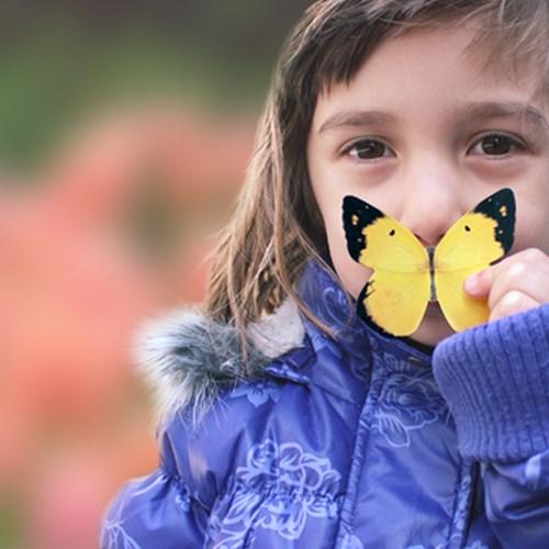 나비 점착메모지 (L)