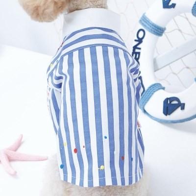 블루 스트라이프 셔츠