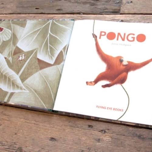 [다락룸] Pongo by Flying Eye Books