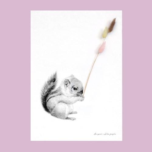 플라워포켓 다람쥐+행잉프레임 세트