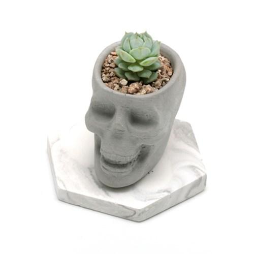 skull pot (해골팟)