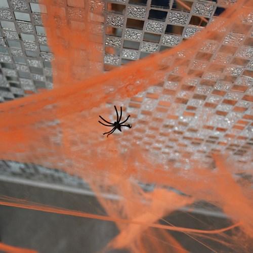 거미줄 [5color]