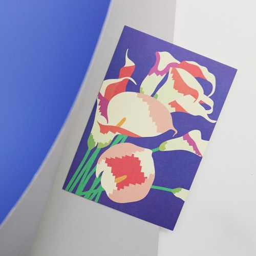 Post card - Illustration (Calla)