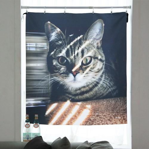 고양이 행잉 패브릭 포스터 / 가리개 커튼 (L)