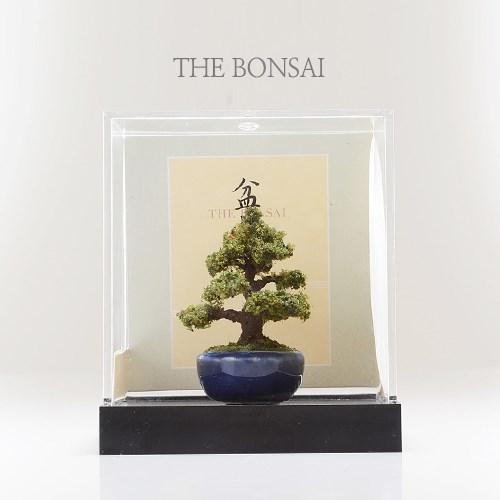 미니어쳐 분재 소나무 삼나무 모형 BONSAI