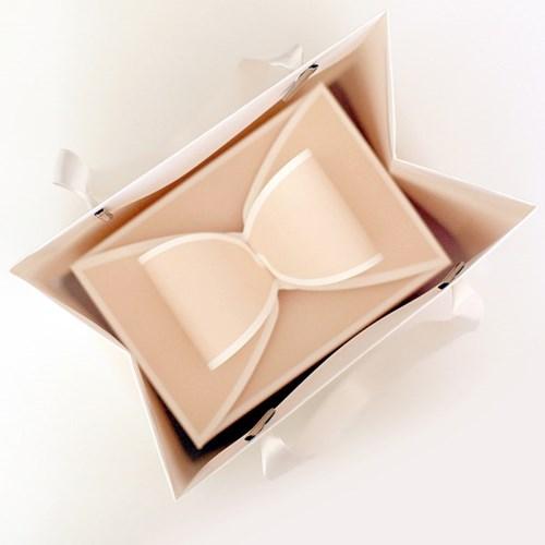 디비디 리본 박스 - pure