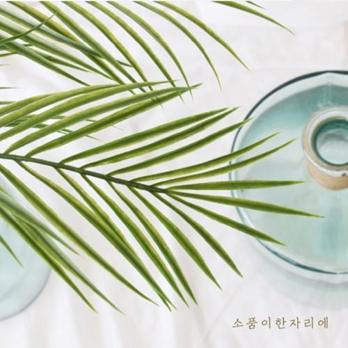 아레카팜잎가지