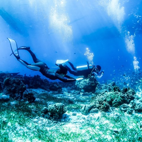 [텐텐클래스] (서울,속초,제주도) 프리다이빙 체험