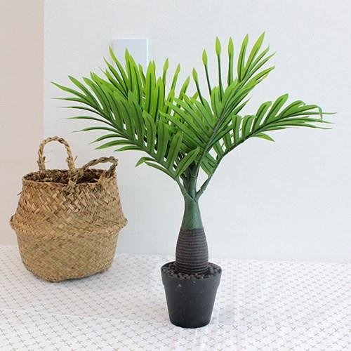이너스 조화화분 소철나무 1P