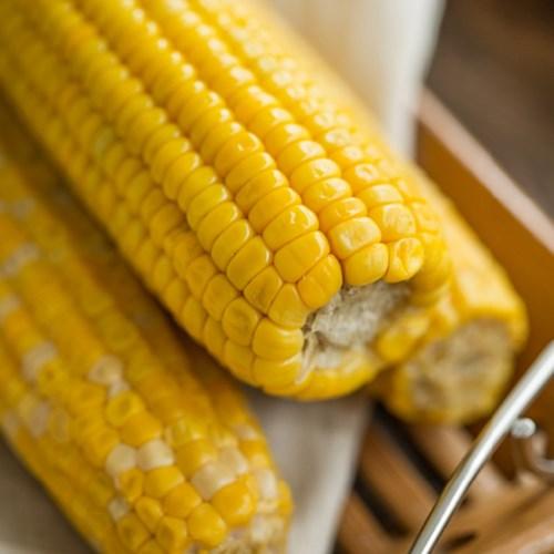 클래식농원 레토르트 초당 옥수수 (10개)