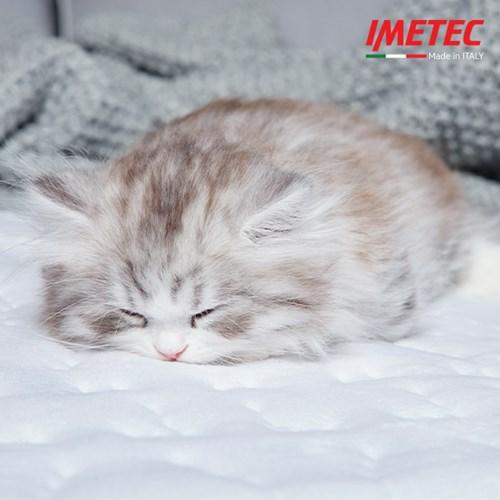 이메텍 소프트 벨벳 전기요 싱글 IMT-661