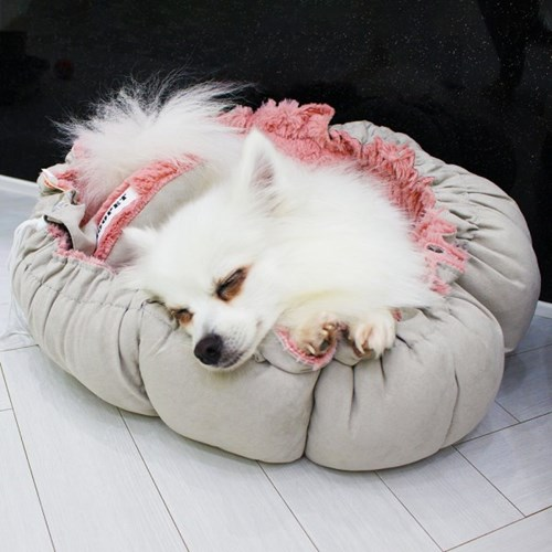 강아지마약방석 모어펫 애견 꽃방석 고양이 겸용 애견방석