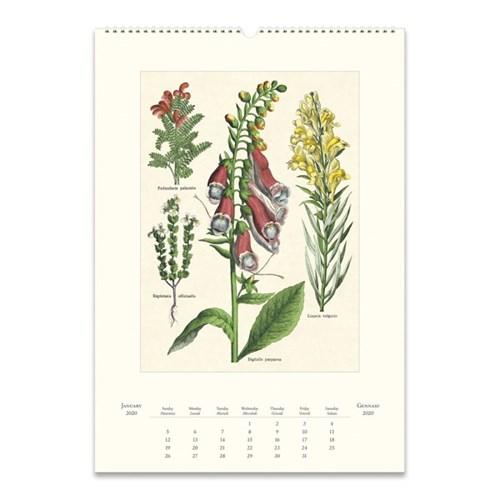 2020 카발리니 캘린더 Wildflowers