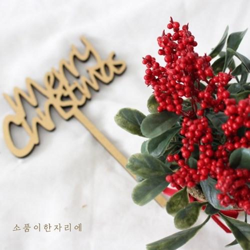 쁘띠 레드 열매 조화 화분
