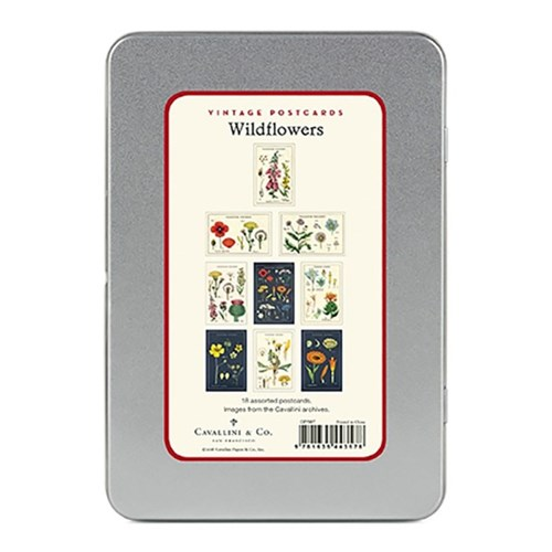 카발리니 엽서세트 - 야생화