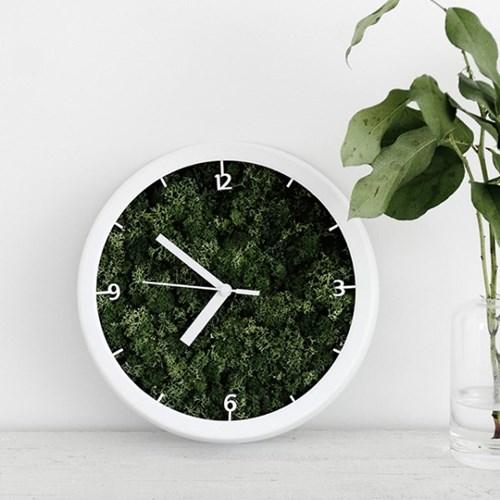 스칸디아모스 액자 시계 인테리어 공기정화식물