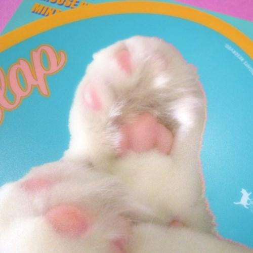 Boss Cat Mouse Pad_Mint