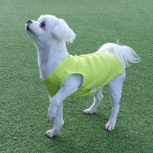 마카롱 탱크탑 강아지옷 편안한 면티셔츠 애견실내복