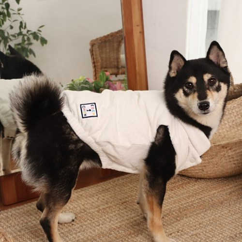 에덴숑-Reversible paisley vest(리버시블 페이즐리 베스트-네이비)