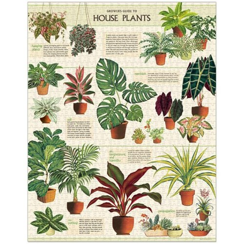 빈티지퍼즐 - House Plants