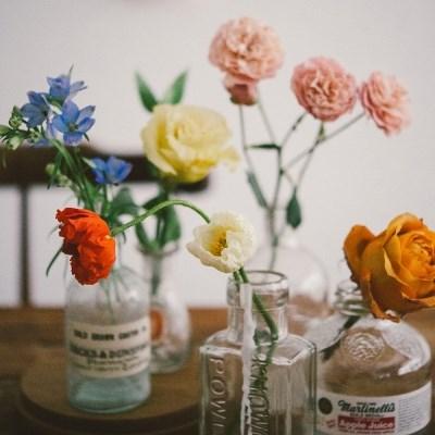 사진아, 꽃이랑 놀자