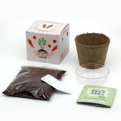 팜팜농장_당근 모종키우기