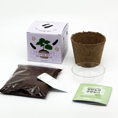 팜팜농장_가지 모종키우기
